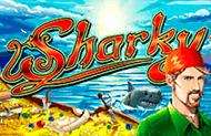 Sharky лучшие аппараты