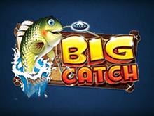 Доход от игрового аппарата Big Catch