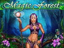 Играть в игровой слот Magic Forest онлайн с выводом