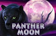 Panther Moon лучшие слоты онлайн