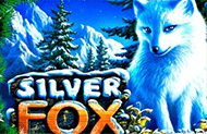 Silver Fox лучшие аппараты